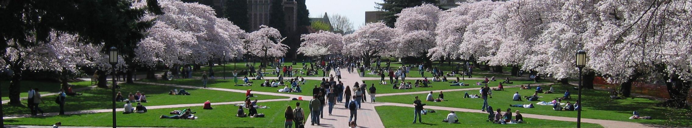student insurance university insurance